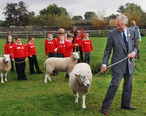 Prince Charles Launches Year of Food & Farming