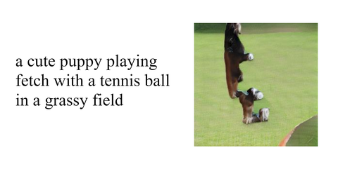 Text, Canidae, Dog, Obedience training, Boston terrier, Border collie, Dog breed, Carnivore, Australian shepherd, Puppy,