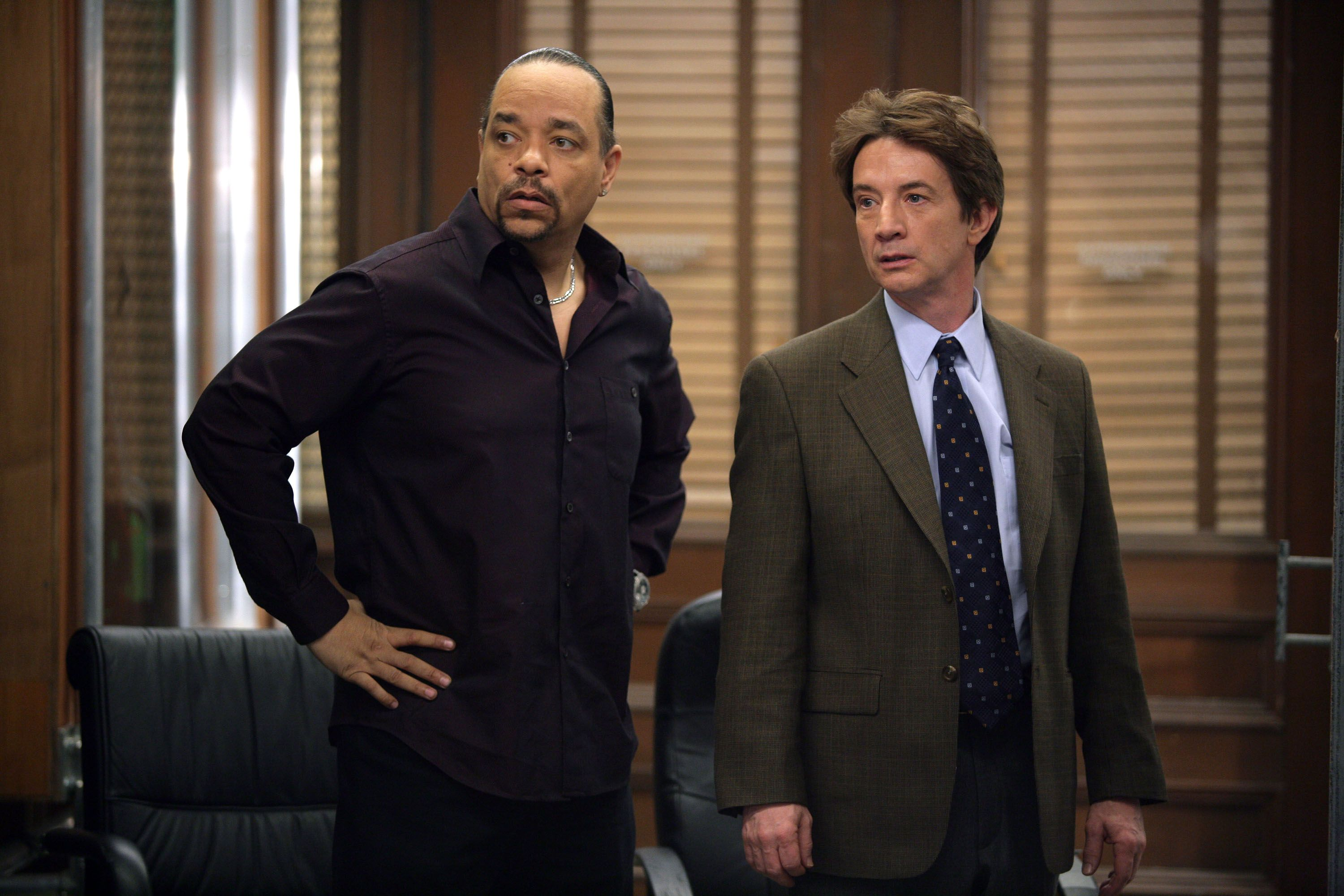 45 Famous Guest Stars From Law & Order: SVU