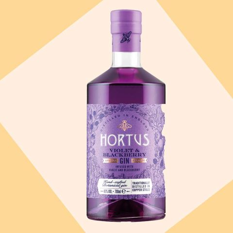 Lidl Violet and Blackberry purple gin