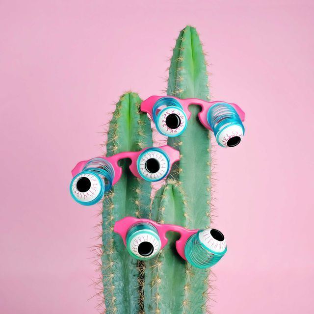 potted cactus wearing goofy eyeball glasses on pink background