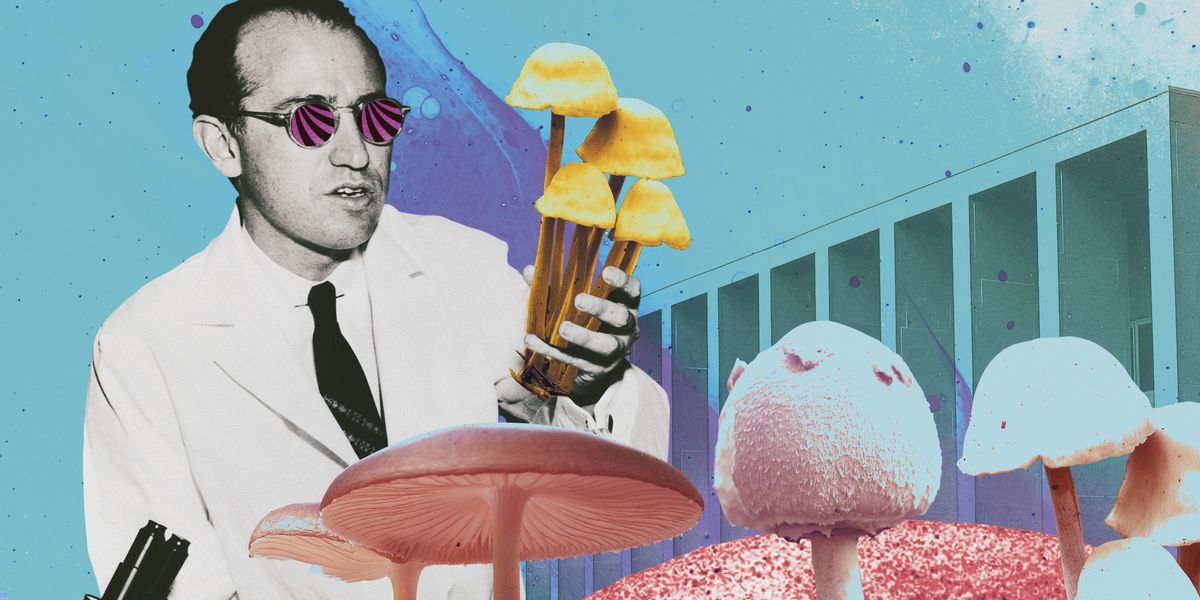 Psychedelics Could Be a Medical Game-Changer—So I Tried Them for My Debilitating Headaches