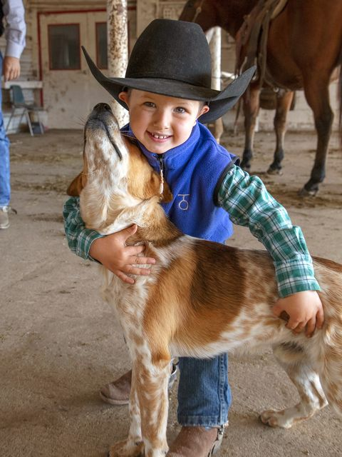 cowboys on the drummond ranch