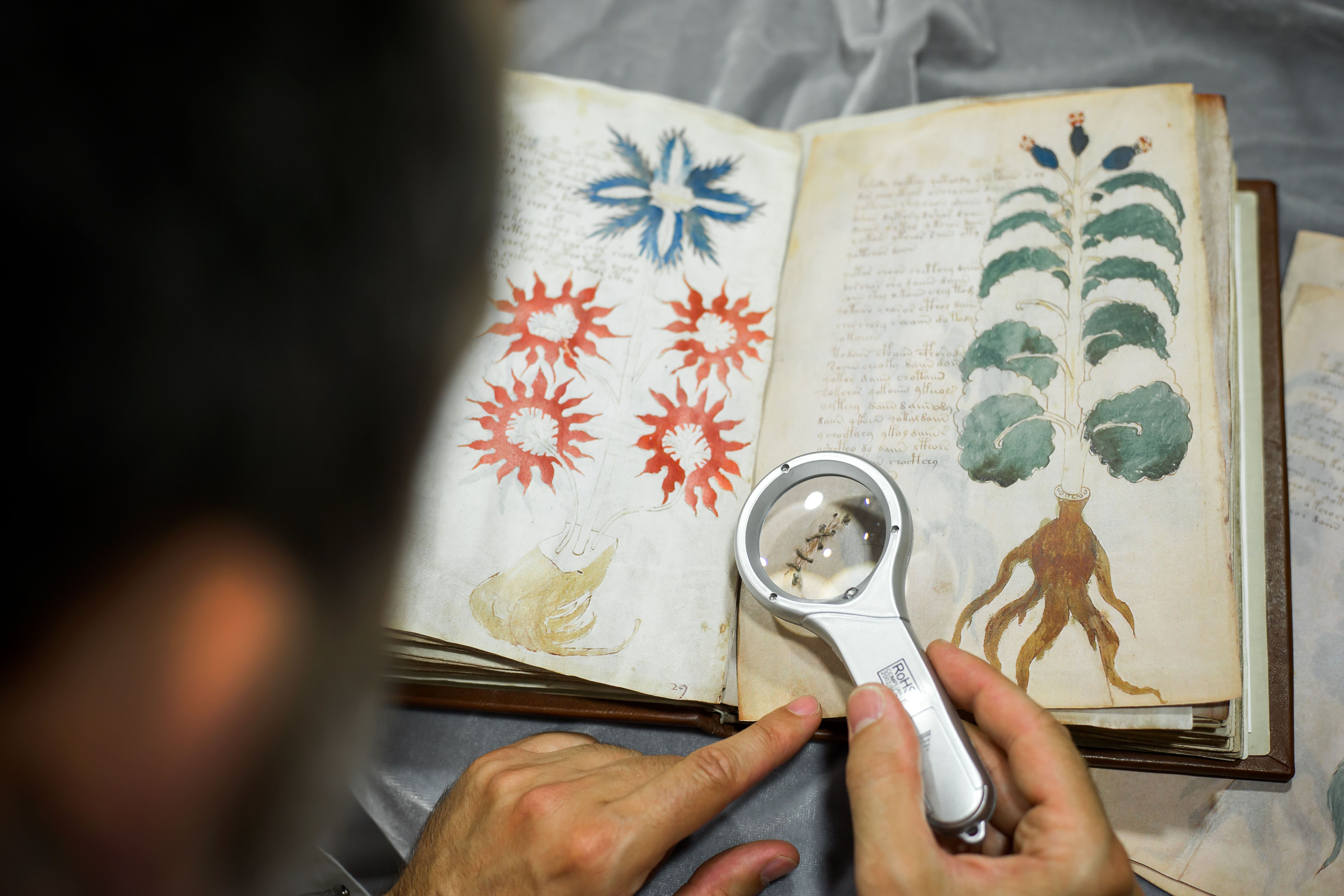 The Truly Baffling Case of the Ancient Voynich Manuscript