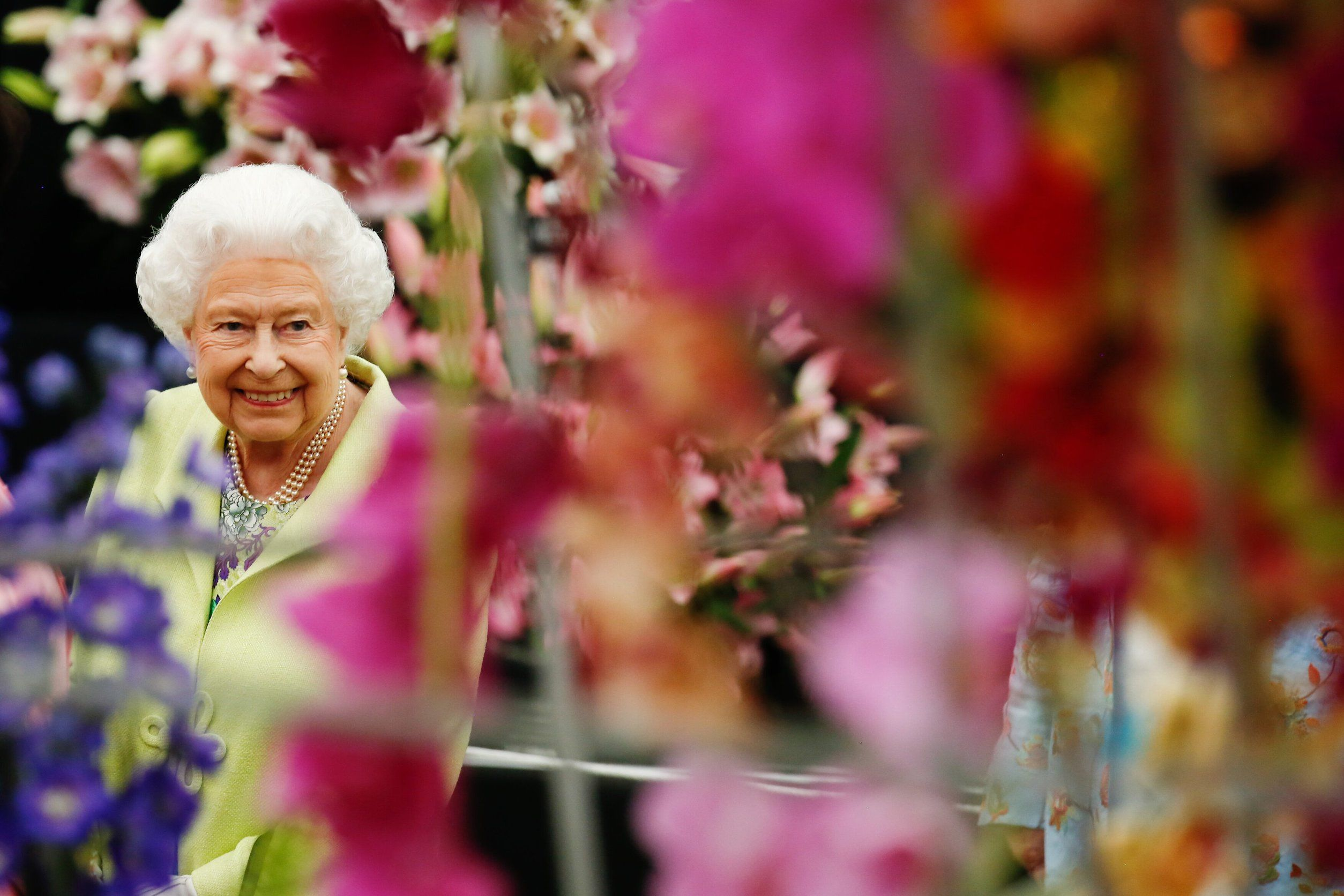 Chelsea Flower Show: The Queen praises Brits' passion for gardening as the RHS launches virtual show