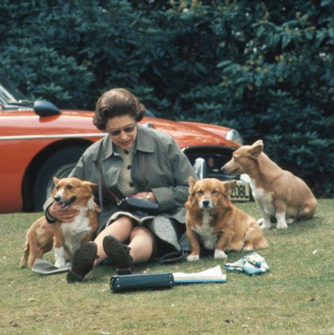 Queen Elizabeth II Sitting with Dogs