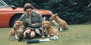 Queen Elizabeth II Sitting with Dogs