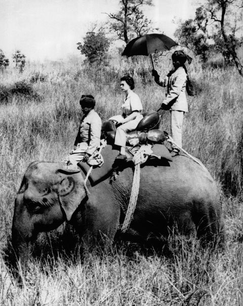 queen elizabeth riding an elephant