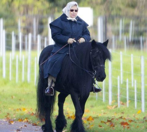 exclusive queen elizabeth ii takes a ride at windsor castle
