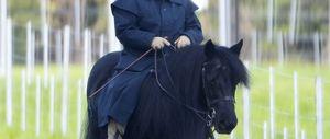 EXCLUSIVE: Queen Elizabeth II Takes A Ride at Windsor Castle
