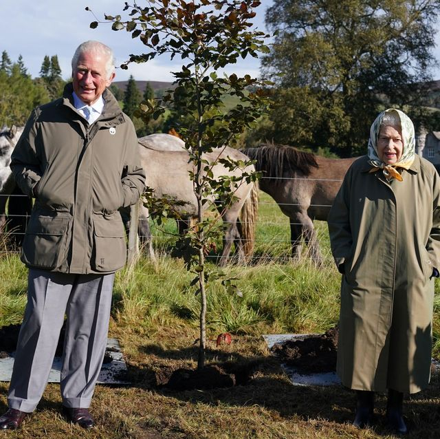 2grgkk0 queen elizabeth ii and prince of wales plant a tree at balmoral cricket pavilion to mark the start of the official planting season for the queen's green canopy qgc at the balmoral estate picture date friday october 1, 2021
