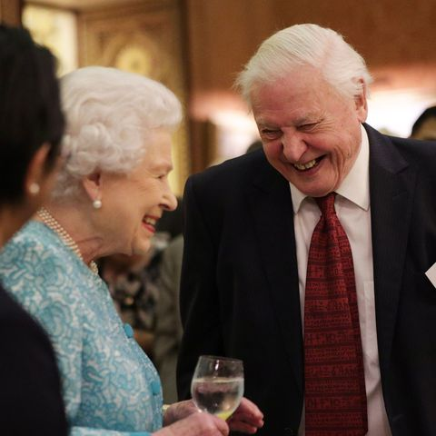 The Queen Hosts A Reception To Showcase The Queen's Commonwealth Canopy