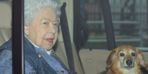 Queen elizabeth leaves London with dog