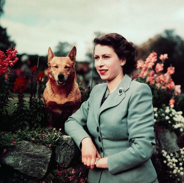 ロイヤルファミリー エリザベス女王 バルモラル城 キャサリン妃 ウィリアム王子 ダイアナ妃 ヘンリー王子 チャールズ皇太子 アン王女 フィリップ殿下