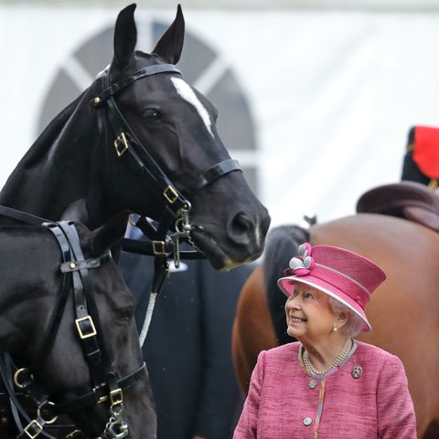 エリザベス女王 乗馬 自主隔離 新型コロナウイルス ロイヤルファミリー