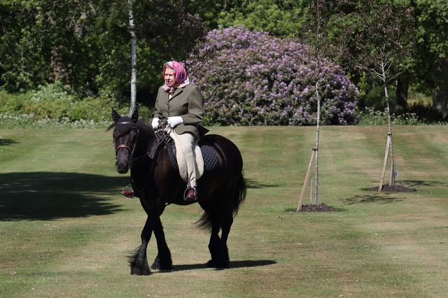 the queen, horse riding, lockdown