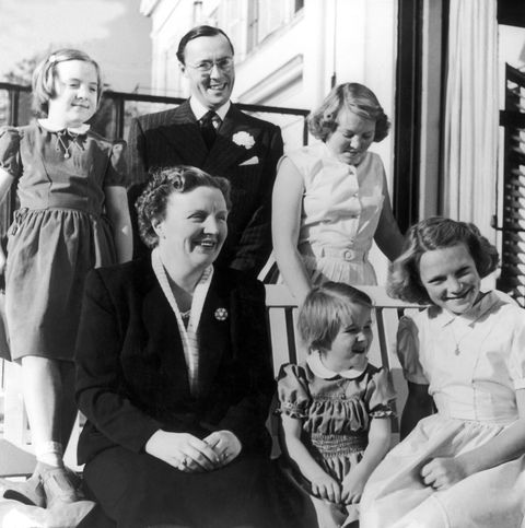 the dutch royal family