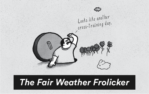 The Fair Weather Frolicker