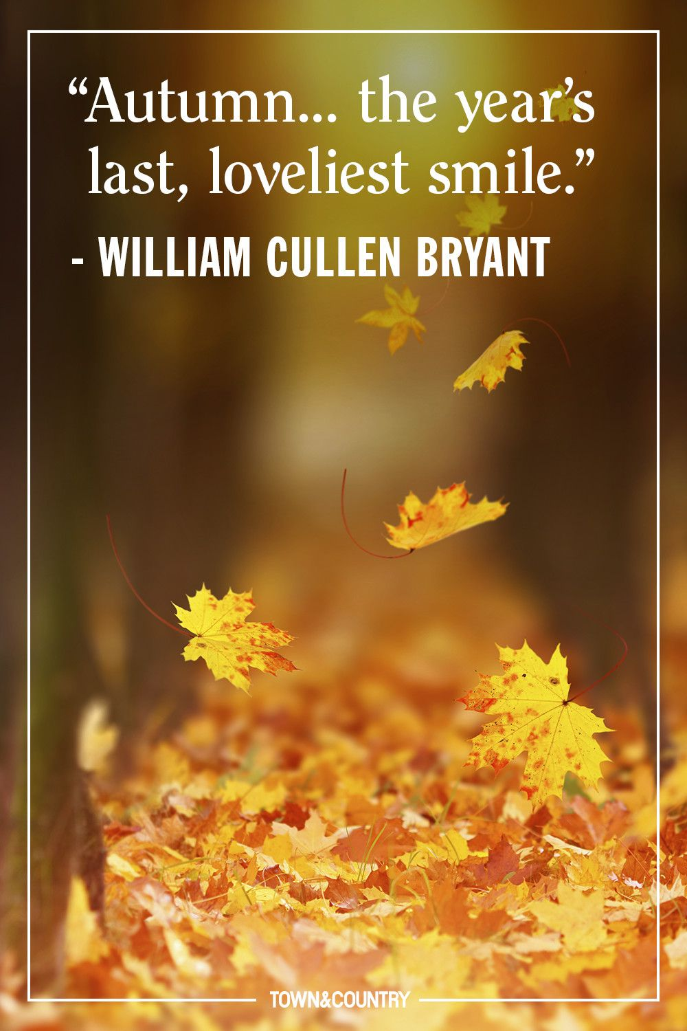 Autumn Quotes 12 Inspiring Fall Quotes   Best Quotes and Sayings About Autumn Autumn Quotes