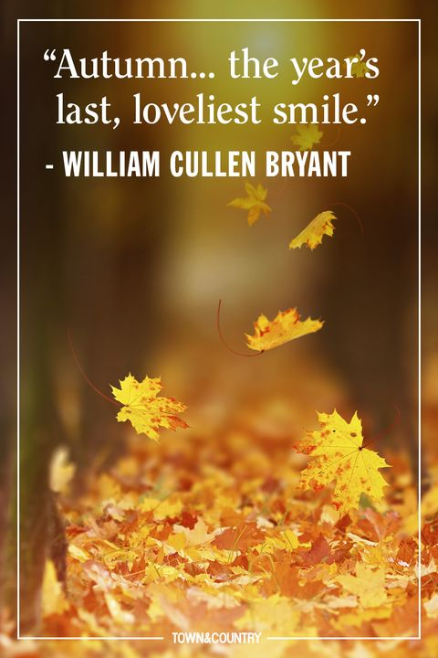 25 Inspiring Fall Quotes Best Quotes And Sayings About Autumn