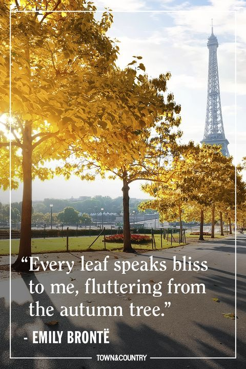 15+ Inspiring Fall Quotes - Best Quotes and Sayings About Autumn