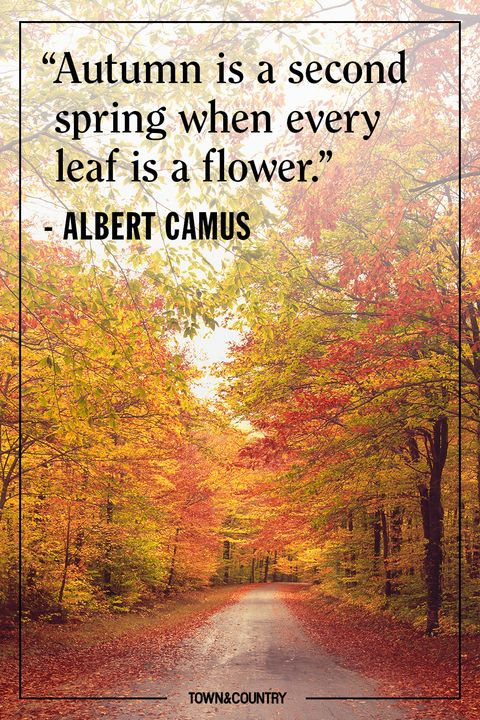 25+ Inspiring Fall Quotes - Best Quotes and Sayings About Autumn