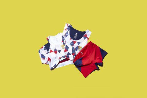 Flag, Illustration, Graphic design, Carmine, Font, Graphics, Logo, T-shirt, Art,