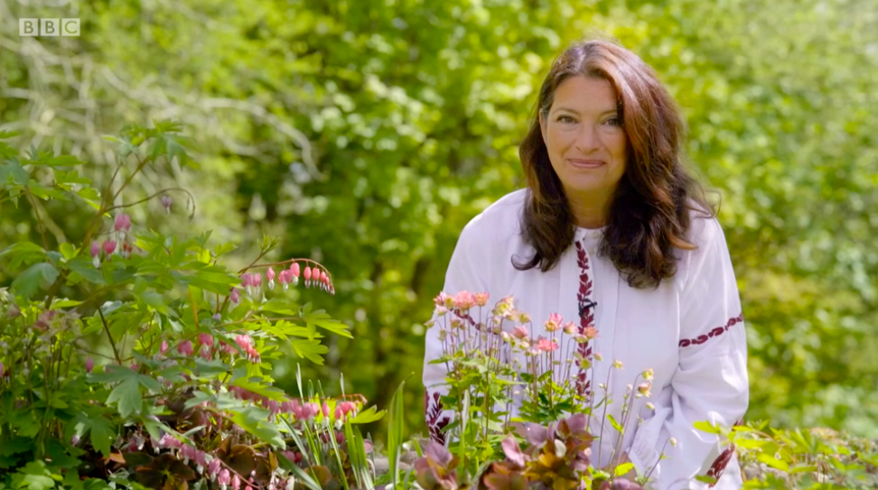 Rachel de Thame's top colourful plants for your garden this summer