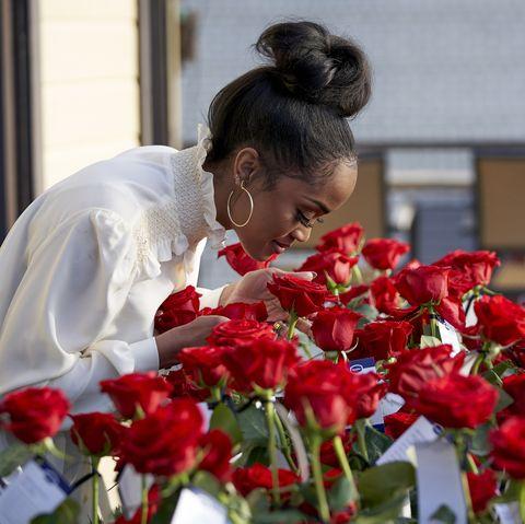 Petal, Flower, Red, Floristry, Flowering plant, Bouquet, Bun, Cut flowers, Flower Arranging, Hair accessory,