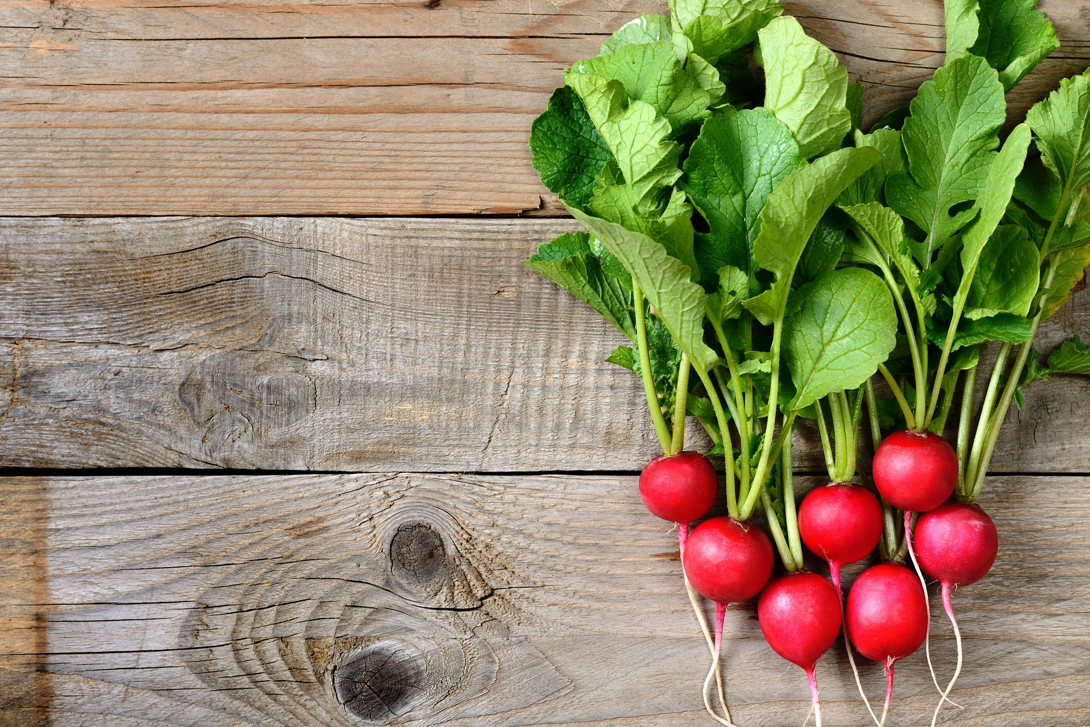 Yes, You Should Eat That Radish Garnish On Your Plate