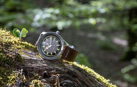 Nature, Watch, Green, Tree, Fashion accessory, Grass, Macro photography, Photography, Strap, Watch accessory,