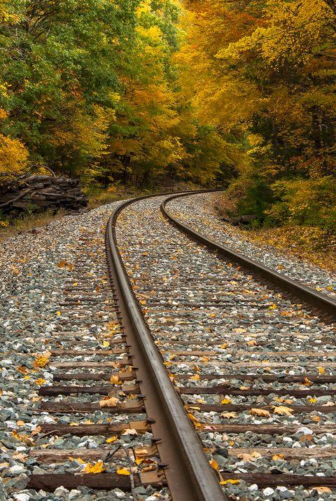 railroad track in fall