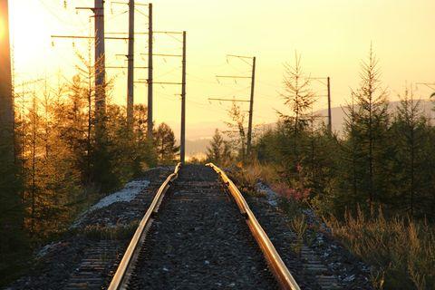 Track, Transport, Sky, Atmospheric phenomenon, Morning, Overhead power line, Tree, Sunlight, Branch, Thoroughfare,
