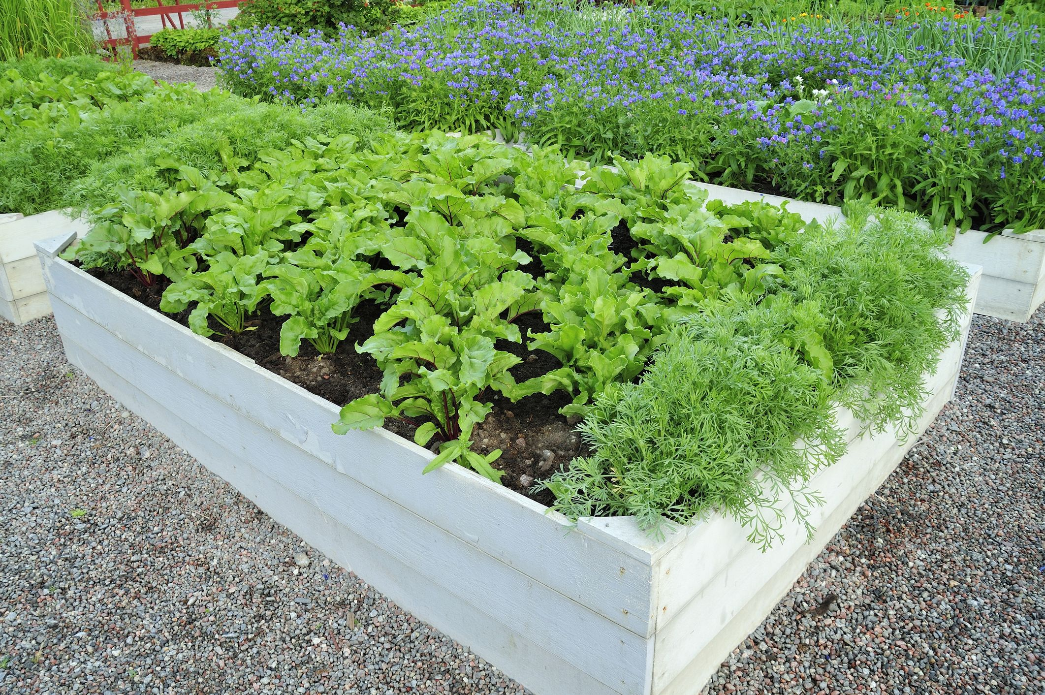15 Inexpensive Raised Garden Bed Ideas, How To Make An Inexpensive Raised Garden Bed