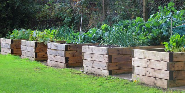 How To Build A Raised Garden Bed Diy Instructions