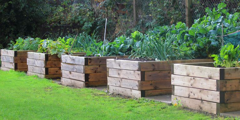 How to Build a Raised Garden Bed - DIY Raised Bed Instructions