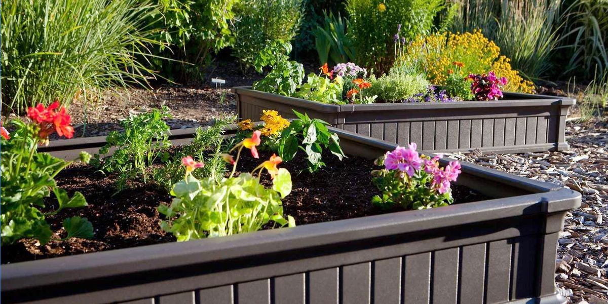 Raised Garden Beds Are the Answer to Your Backyard's Poor Soil Conditions