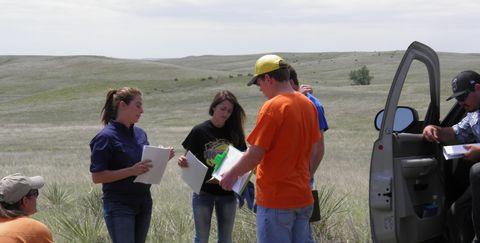 Grassland, Community, Ecoregion, Grass, Prairie, Geology, Recreation, Tree, Landscape, Fell,