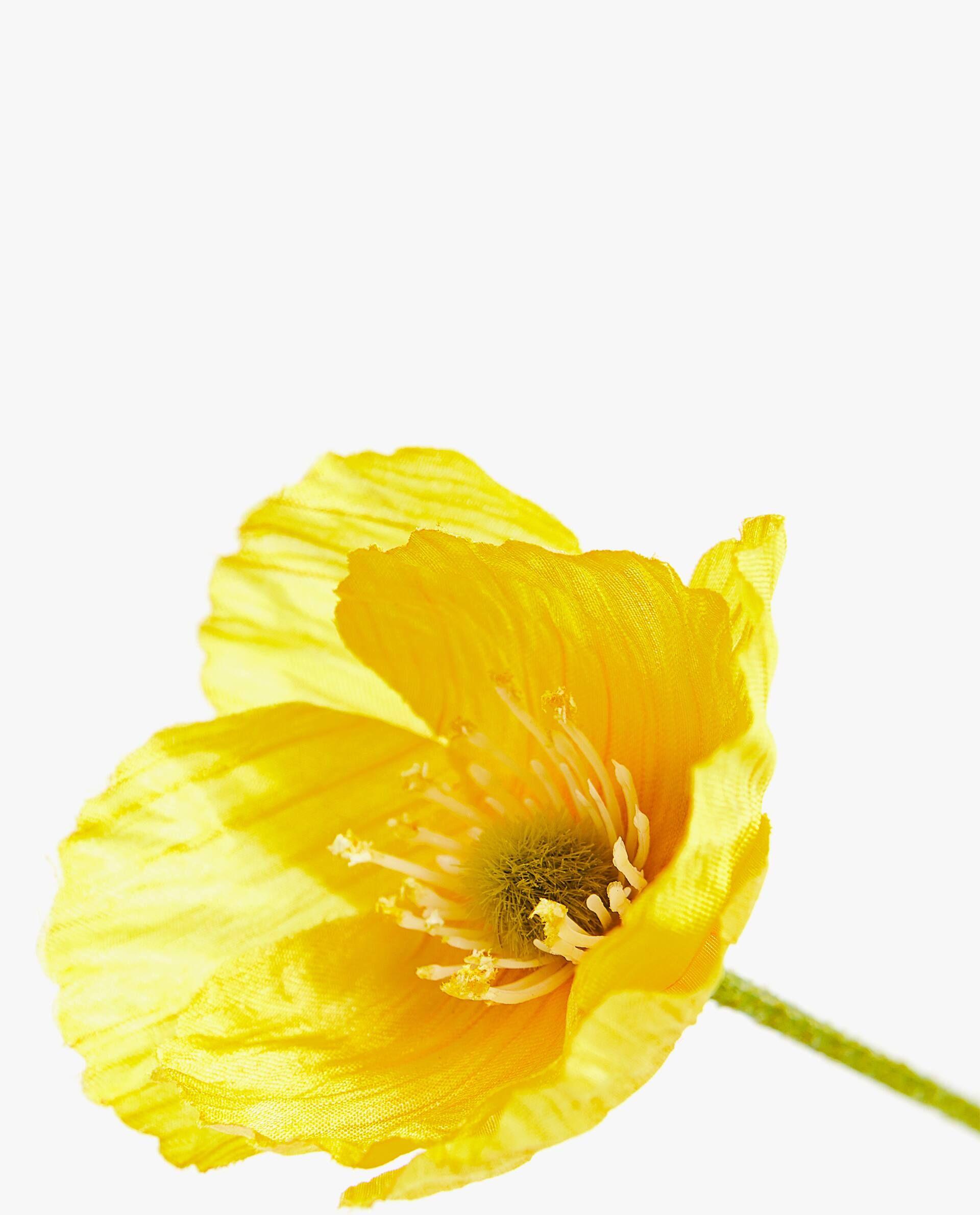 Ranúnculo artificial amarillo