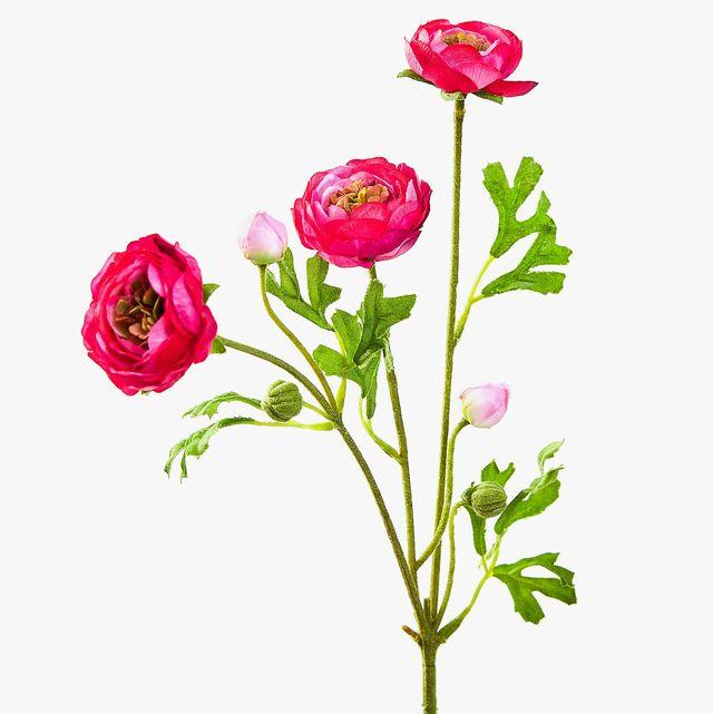 Ranúnculo rosa artificial
