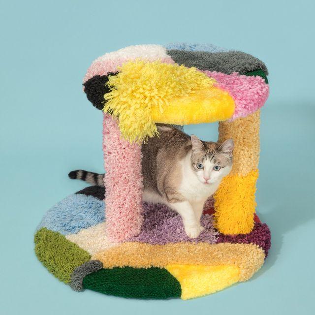 rascador de colores para gatos