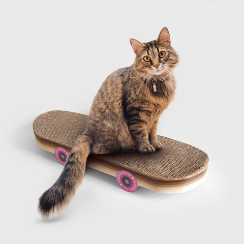 rascador con forma de skate