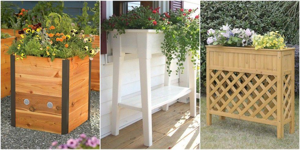 12 Best Raised Garden Beds to Elevate Your Garden