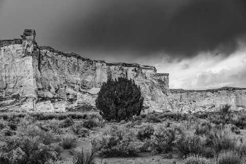 photography, utah, desert
