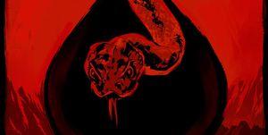 Serpiente de cascabel poster