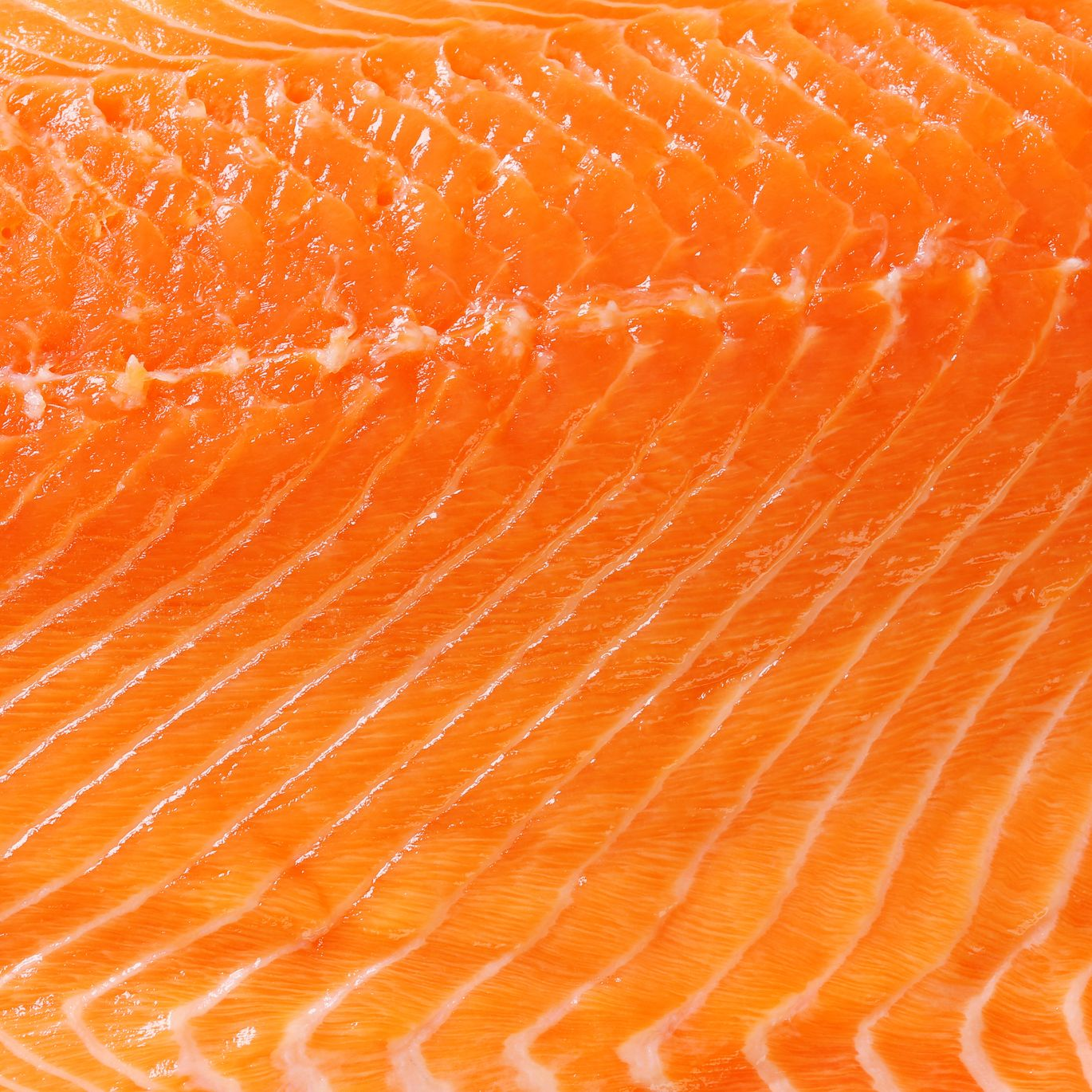 Raw salmon background