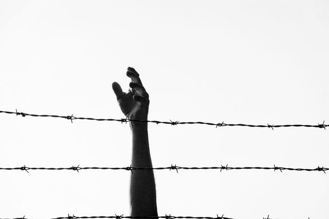 reaching freedom