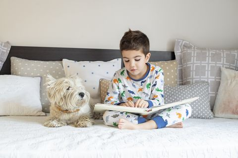Reading book to his westy dog puppy