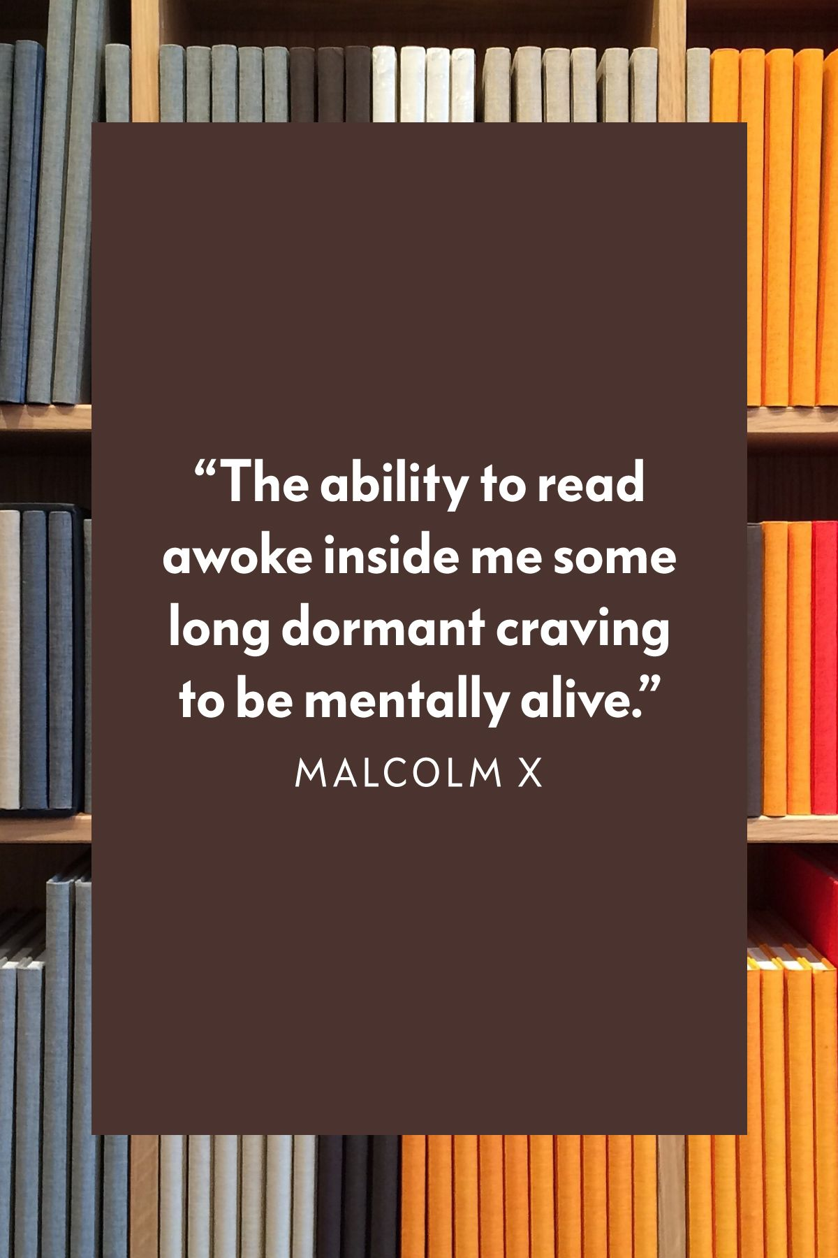 25 Best Quotes About Reading