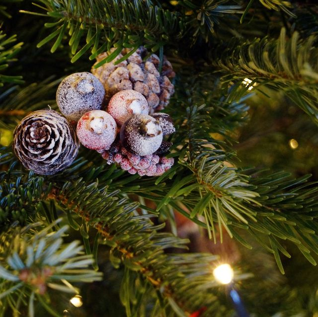 small christmas decoration in a real christmas tree